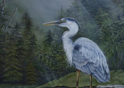 """'King of the Marshlands'  Great Blue Heron   Acrylic on 21"""" x 15"""" watercolour paper (matted and framed)  Greeny Lake, Lac la Hache, B.C.   For sale @ $550 By Bobbie Crane"""