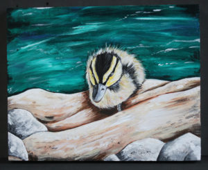 Woodland baby duck on driftwood. Acrylic on wood canvas. Accepting offers on purchasing. 8 1/2 x 11 By Miranda Marcotte