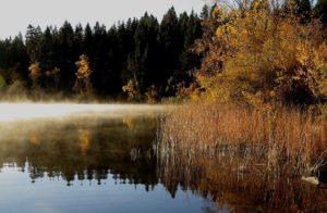 dugan lake 150 Mile house - fall colors By Rebecca Pickard